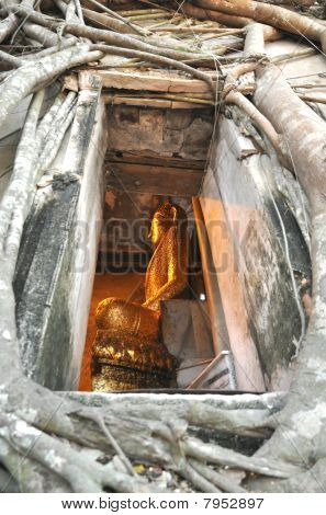 Buddha Vent Frame Wall Root