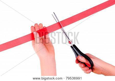 cuts red tape