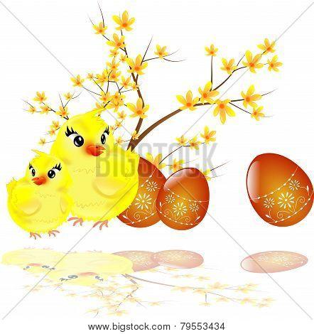 Easter Eggs, Chicken And Laburnum