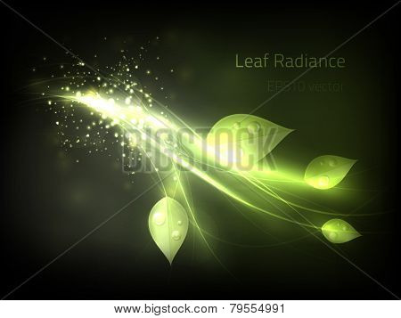 EPS10 vector leaf radiance