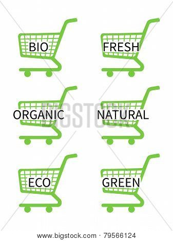 Green Shopping Cart Icons With Bio Texts