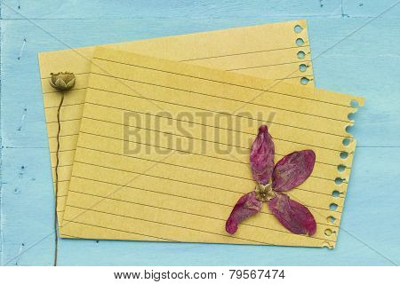 Empty Paper With Decoration