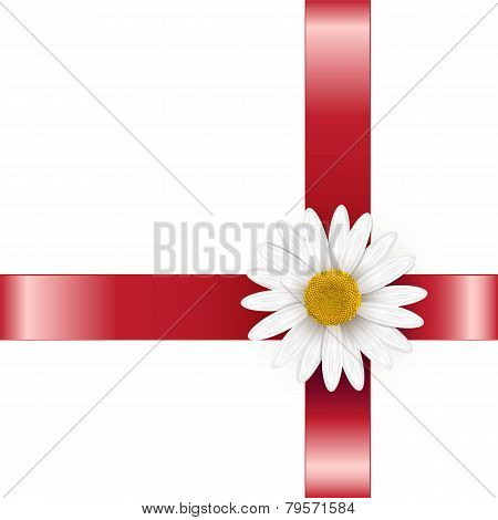 Gift Decorated With A Flower Daisies