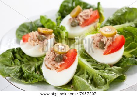 salad plate of letuce egg tuna and olive
