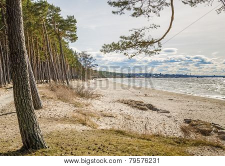 Coast Of Baltic Sea, A Sunny Day