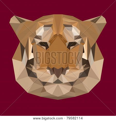 Polygonal Geometric Triangle Abstract Tiger