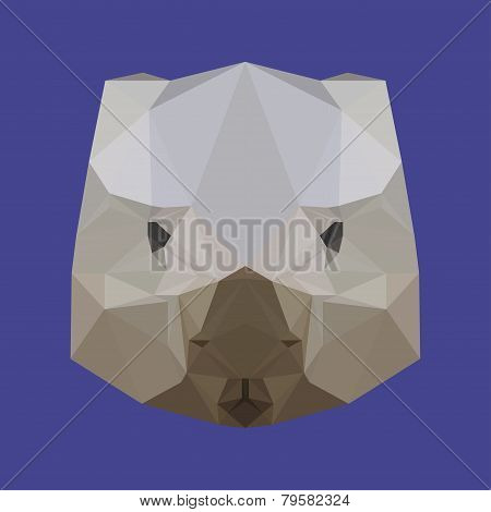 Polygonal Geometric Triangle Abstract Wombat Background