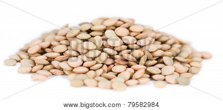 Brown Lentils (isolated On White)
