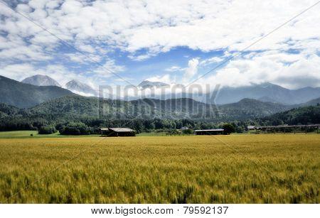 Gorenjska landscape, Slovenia