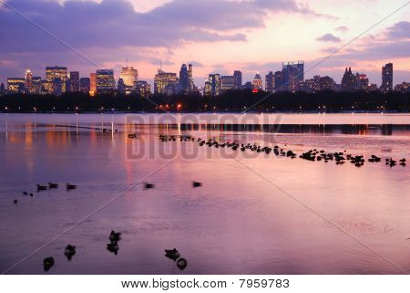 Central Park Sunset With New York City Skyline
