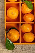 foto of clementine-orange  - Tangerines or Mandarin orange in the orange box - JPG