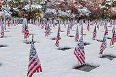 image of veterans  - Snow - JPG