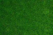 foto of indoor games  - fresh green grass floor as texture background - JPG