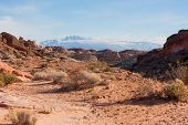 pic of valley fire  - View of mountains from Valley of Fire State Park Nevada - JPG