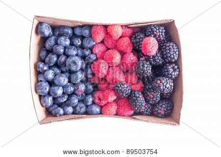 Punnet Of Ripe Assorted Fresh Autumn Berries