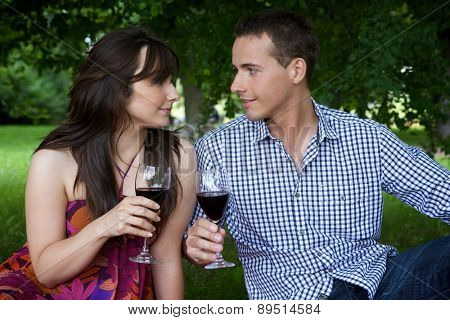 Young couple looking at each other and toasting wine in park