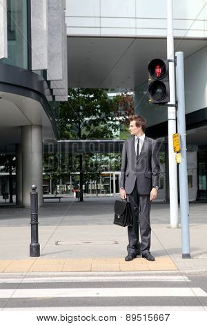 young caucasian businessman in park standing on red light on zebra