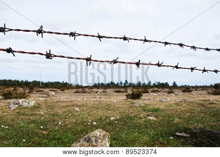 Rusty Barb Wire