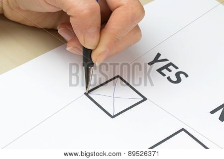 Filling Yes In The White Printed Form