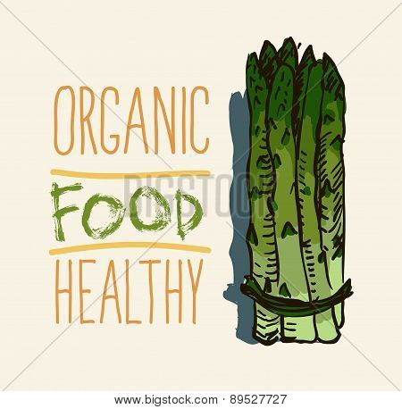 hand drawn vintage illustration of asparagus