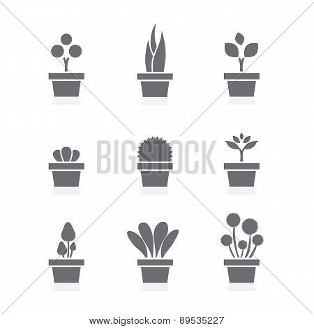 Set Of Pot Plants Black Symbol.
