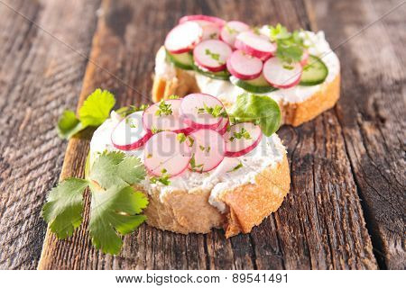 canape with cheese and radish