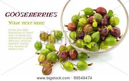 Gooseberries In A Bowl
