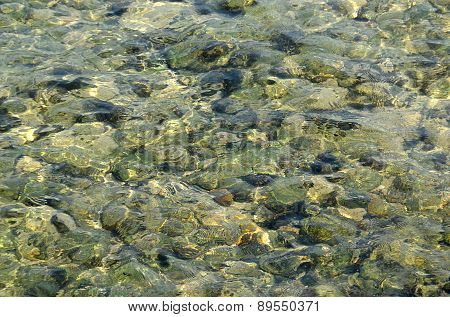 Clear See Through Sea Water Photo Texture