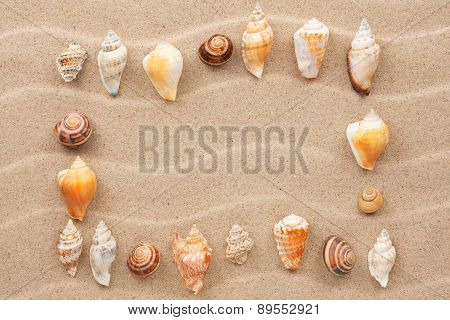 Frame Made Of Seashell On A Wavy Sand