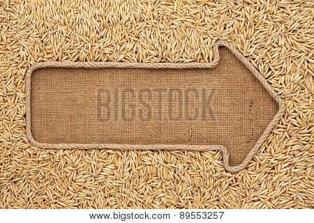 Pointer Made From Rope With Grain Oats  Lying On Sackcloth