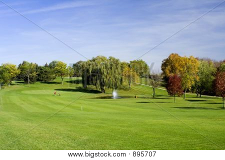 Fairway,  Green And Golfer