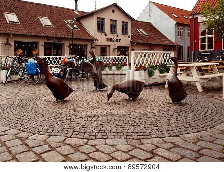 Geese with Aakirkeby.