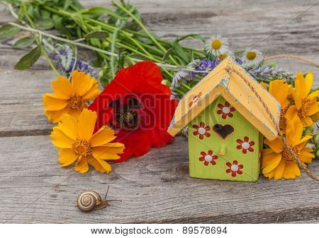 Summer Background With A Snail And Decorative Starling House