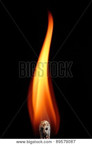 The Flame Of A Match
