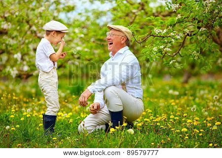 Happy Grandpa With Grandson Blowing Dandelions In Spring Garden