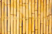 picture of bamboo  - Close up bamboo wall  - JPG
