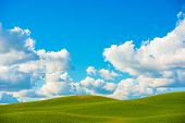 pic of butts  - Scenic Meadow Photo Background - JPG