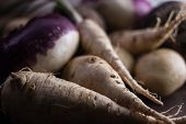 pic of root-crops  - root vegetables from the garden on a brown background - JPG