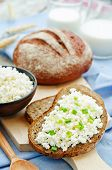 picture of whole-grain  - healthy Breakfast with whole grain rye bread cottage cheese and milk  - JPG