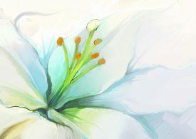 foto of garden-art  - Close up White lily flower - JPG