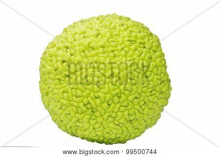 Fruit of Maclura Pomifera