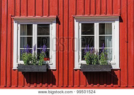 Windows on a wooden facade