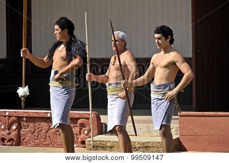 Polynesian Haka Dance