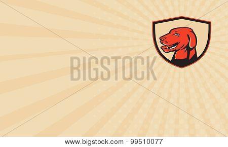 Business Card Labrador Golden Retriever Dog Head Shield Retro