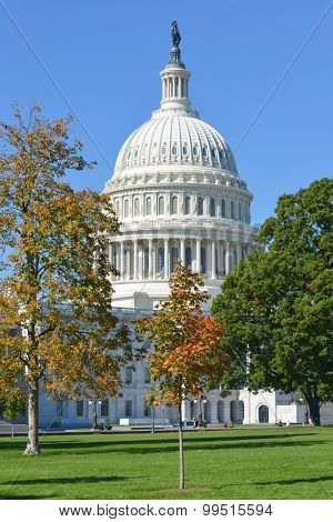 Washington DC - United States Capitol Building in Autumn