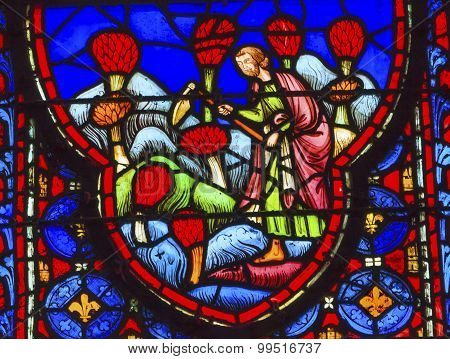 Farmers Flowers Stained Glass Sainte Chapelle Paris France