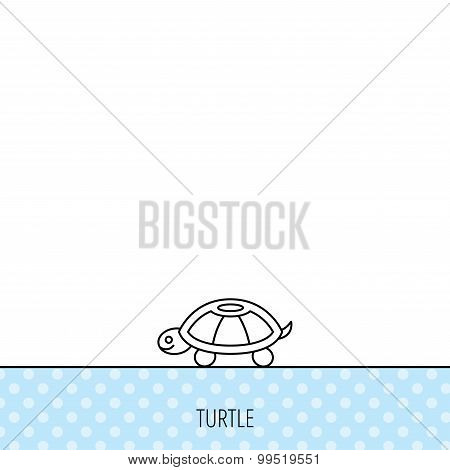 Turtle icon. Tortoise sign.