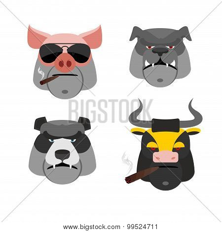 Set Of Angry Animals. Head Of A Pig And Bull. Bad  Bear And Bulldog. Vector Illustration