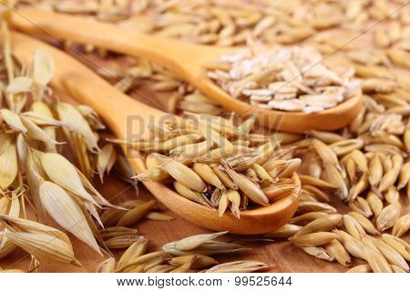 Organic Oat Grains And Oatmeal On Wooden Spoon, Healthy Nutrition
