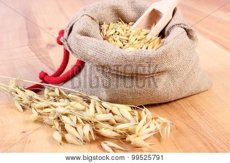 Organic Oat Grains In Jute Bag, Healthy Nutrition